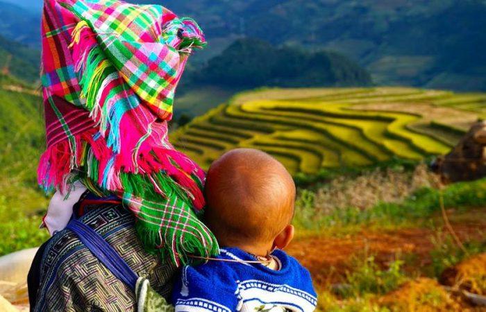 rice terrace - mu cang chai-vietnam