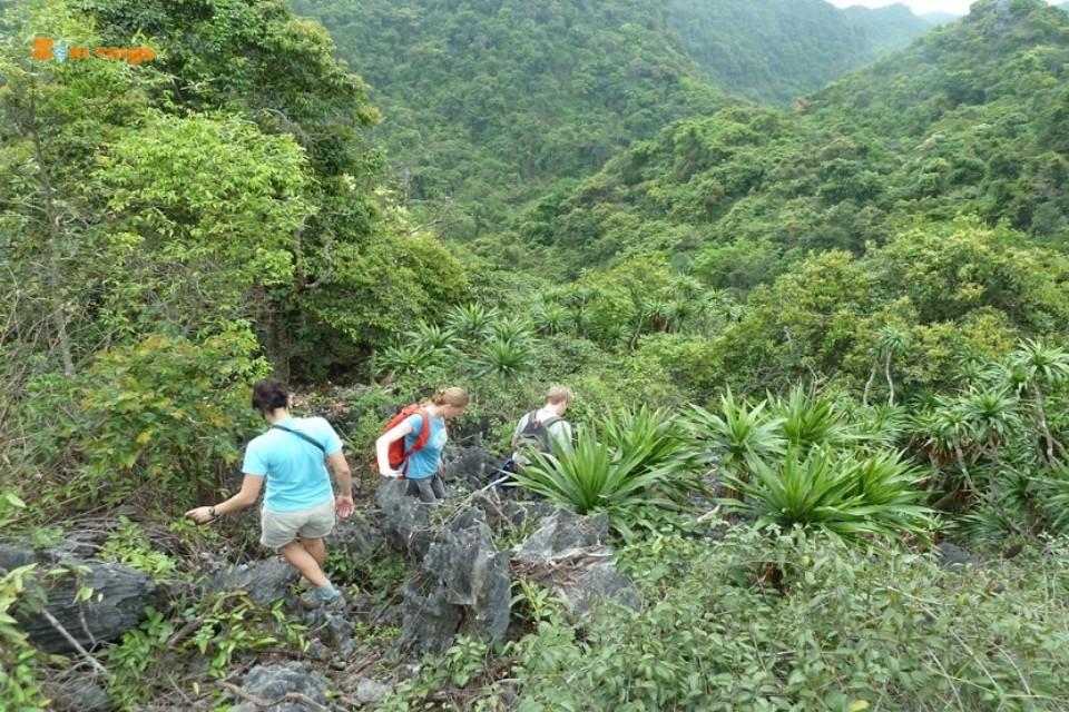 halong - lan ha bay-trekking