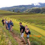 trekking mu cang chai - thumnail