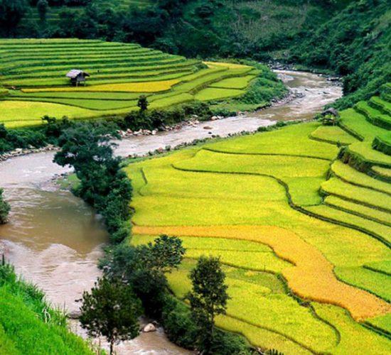 sapa, vietnam 960px