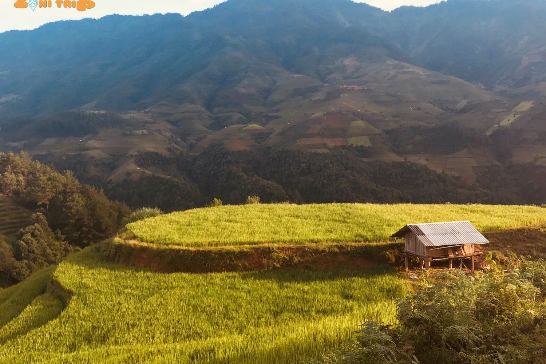 mu cang chai trekking tour