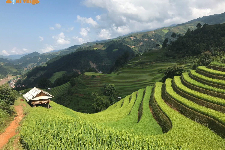 mu cang chai- sapa trekking