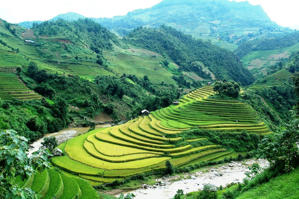 mui giay, rice terrace in mu cang chai
