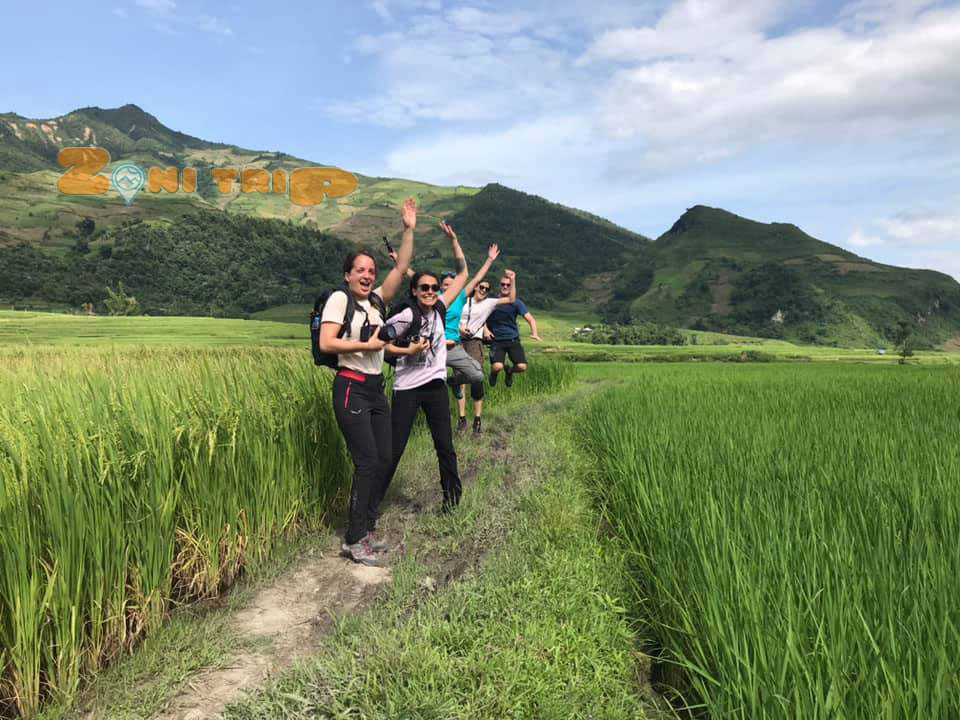trekking on the rice field in Mu Cang Chai