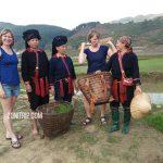 trekking mu cang chai- anh thumnail 500px