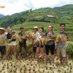 mu cang chai trekking tour 5
