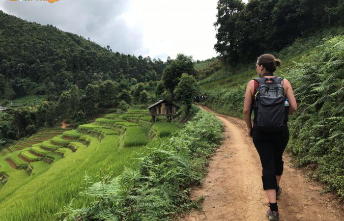 hiking mu cang chai- vietnamhiking mu cang chai- vietnam