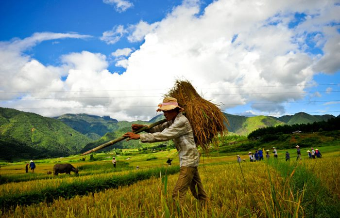 Trekking pu Luong, thanh hoa